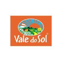 LOGO VALE DO SOL (Cópia)